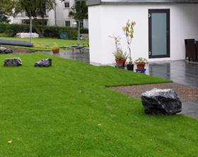Rasen in Köln